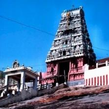 Puja at Sri Subramanyaswamy Temple, Thiruthani | Puja for Arupadai